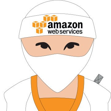 HOW TO TRAIN TOWARD A BLACK BELT IN AWS NINJITSU